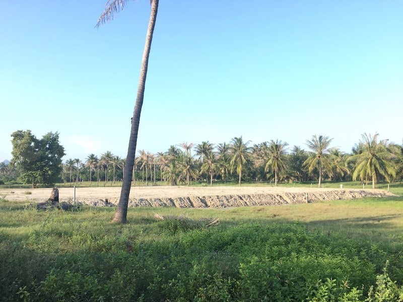 Dolphin Bay land for sale