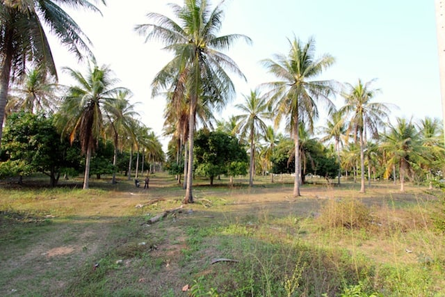 buy thailand beachfront land | dolphin bay beachfront land for sale | Hua Hin real estate | hua hin real estate agents